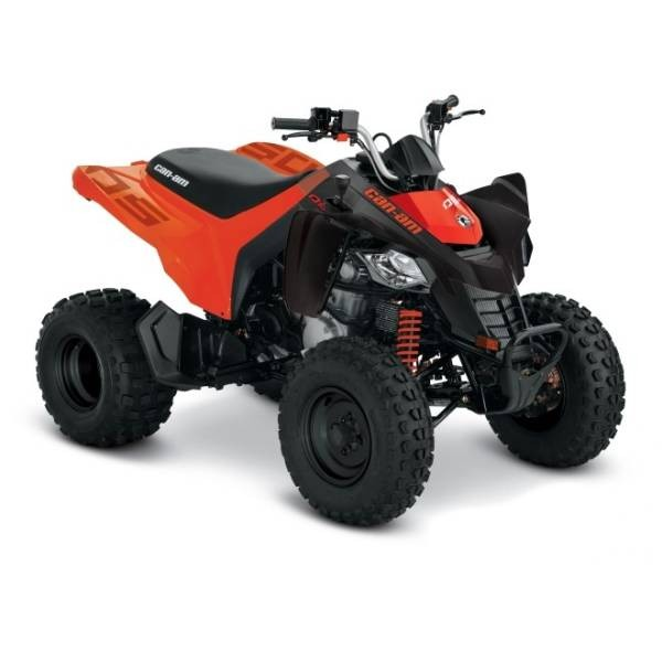 CAN AM DS 250 INT MY21